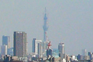 Skytree_up
